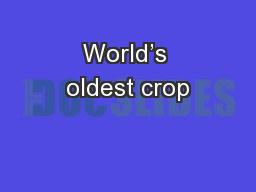 World's oldest crop