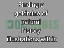 Finding a goldmine of natural history illustrations within