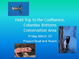 Field Trip to the Confluence, PowerPoint PPT Presentation