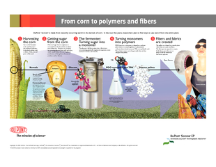 om corn to polymers and fibers PowerPoint PPT Presentation