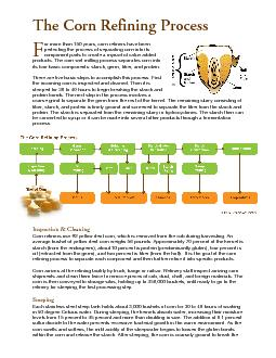 The Corn Refining Process or more than  years corn refiners have been perfecting the process of separating corn into its component parts to create a myriad of value added products PowerPoint PPT Presentation