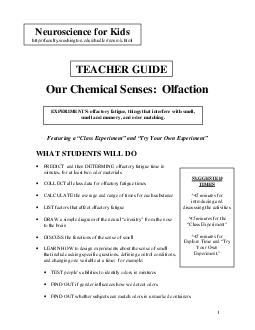 Our Chemical Senses  Olfaction Featuring a Class Experiment and Try Your Own Experiment WHAT STUDENTS WILL DO PREDICT and then DETERMINE olfactory fatigue time in minutes for at least two odor materi PDF document - DocSlides