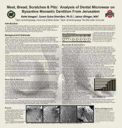 Meat, Bread, Scratches & Pits:  Analysis of Dental
