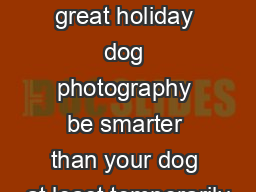 e secret to great holiday dog photography be smarter than your dog at least temporarily PDF document - DocSlides