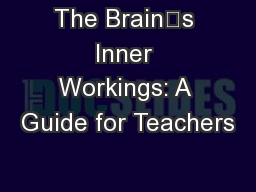 The Brains Inner Workings: A Guide for Teachers