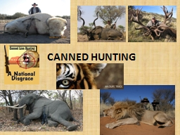 CANNED HUNTING PowerPoint PPT Presentation