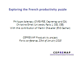 Exploring the French productivity puzzle