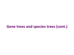 Gene trees and species