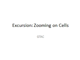 Excursion: Zooming on Cells PowerPoint PPT Presentation