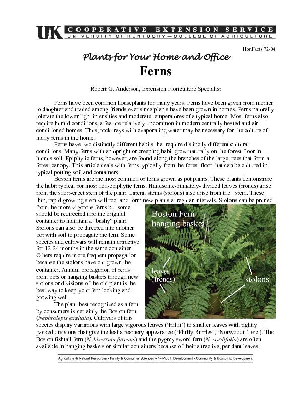Plants for Your Home and Office PDF document - DocSlides
