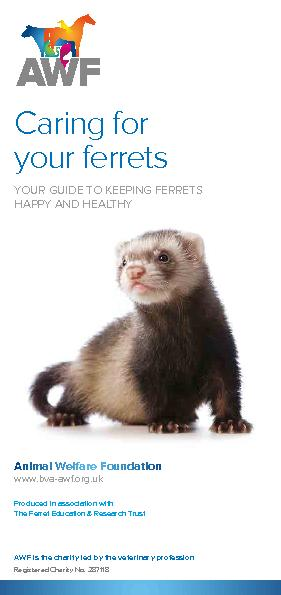 Produced in association withCaring for your ferretsYOUR GUIDE TO KEEPI