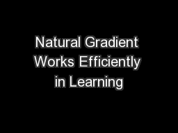 Natural Gradient Works Efficiently in Learning