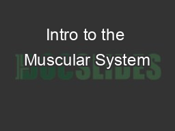 Intro to the Muscular System