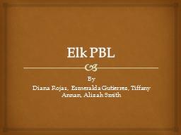 Elk PBL