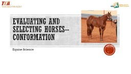 Evaluating and Selecting Horses--Conformation
