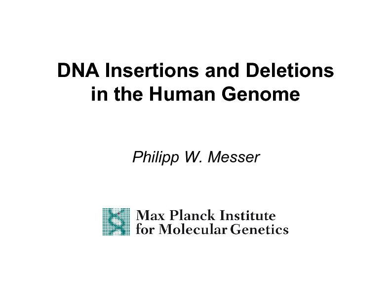 DNA Insertions and Deletions PowerPoint PPT Presentation