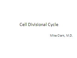 Cell Divisional Cycle