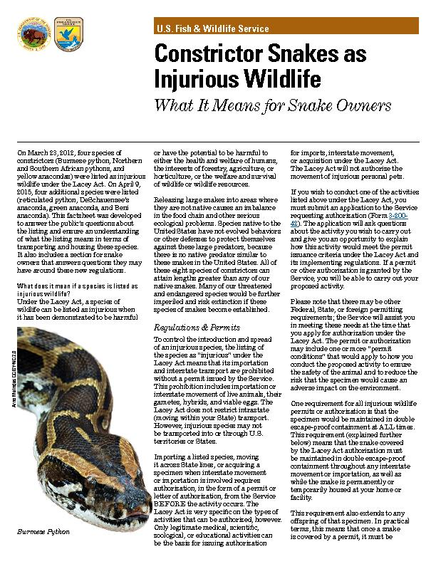 Constrictor Snakes as Injurious Wildlife PowerPoint PPT Presentation