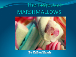 The Project of MARSHMALLOWS