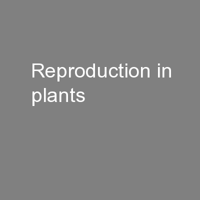 Reproduction in plants PowerPoint Presentation, PPT - DocSlides