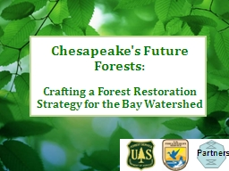 Chesapeake's Future Forests: