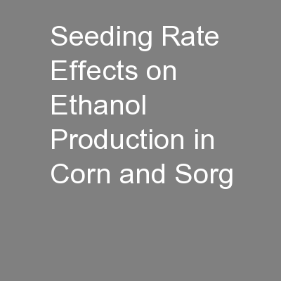 Seeding Rate Effects on Ethanol Production in Corn and Sorg PowerPoint PPT Presentation