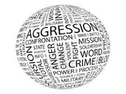 AGRESSION : TITS , BITS  AND  PITS