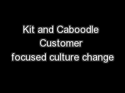 Kit and Caboodle Customer focused culture change PowerPoint PPT Presentation
