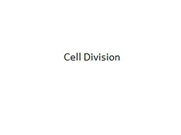 Cell Division PowerPoint PPT Presentation