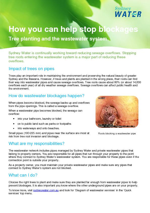 How you can help stop blockages Tree planting and the wastewater syste