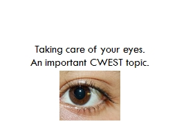 Taking care of your eyes. PowerPoint PPT Presentation