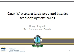 """Class """"A"""" western larch seed and interim seed deploymen"""