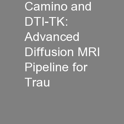 Camino and DTI-TK: Advanced Diffusion MRI Pipeline for Trau PowerPoint PPT Presentation