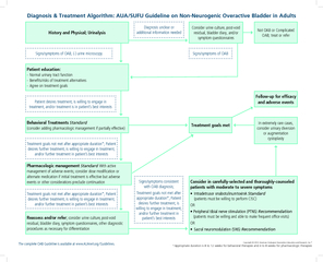 History and Physical Urinalysis Diagnosis unclear or a