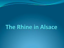 The Rhine in Alsace