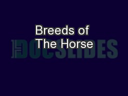 Breeds of The Horse