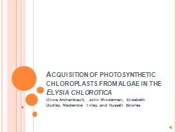 Acquisition of photosynthetic chloroplasts from algae in th