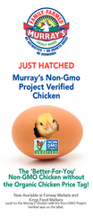 Lii i  What are GMOs or Genetically Modied Organisms G PowerPoint PPT Presentation