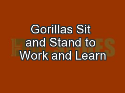 Gorillas Sit and Stand to Work and Learn