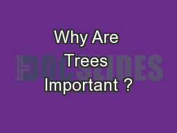 Why Are Trees Important ?