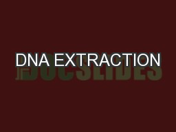 DNA EXTRACTION PowerPoint PPT Presentation