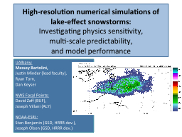 High-resolution numerical simulations of lake-effect snowst