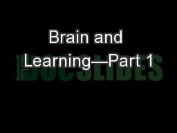 Brain and Learning—Part 1