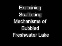 Examining Scattering Mechanisms of Bubbled Freshwater Lake