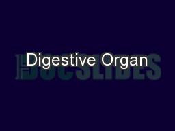 Digestive Organ