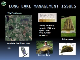 Long Lake management issues PowerPoint PPT Presentation