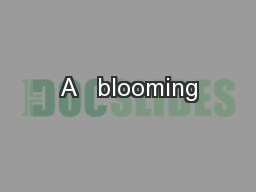 A   blooming PowerPoint PPT Presentation