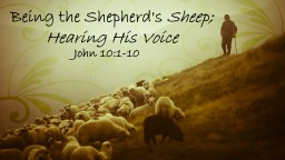 Being the Shepherd's PowerPoint PPT Presentation