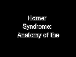 Horner Syndrome: Anatomy of the