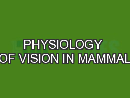 PHYSIOLOGY OF VISION IN MAMMAL